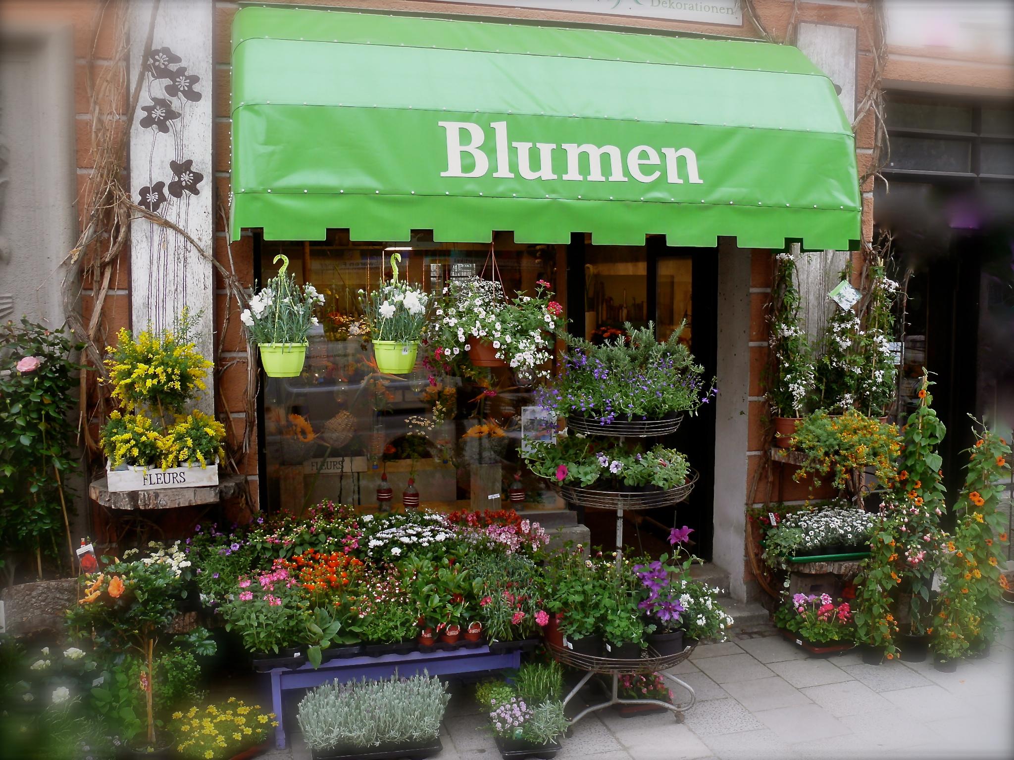 Öffnungszeiten Blumen Schachtner Karl-Theodor-Straße 33
